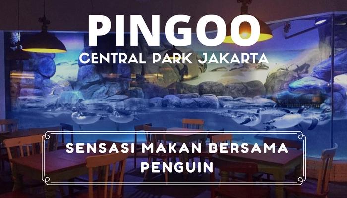 Pingoo Tempat Makan Bersama Penguin Di Central Park Jakarta