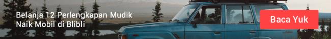 Blog-1 mudik mobil
