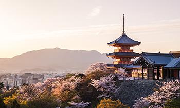 Promo Spesial Jepang & Korea