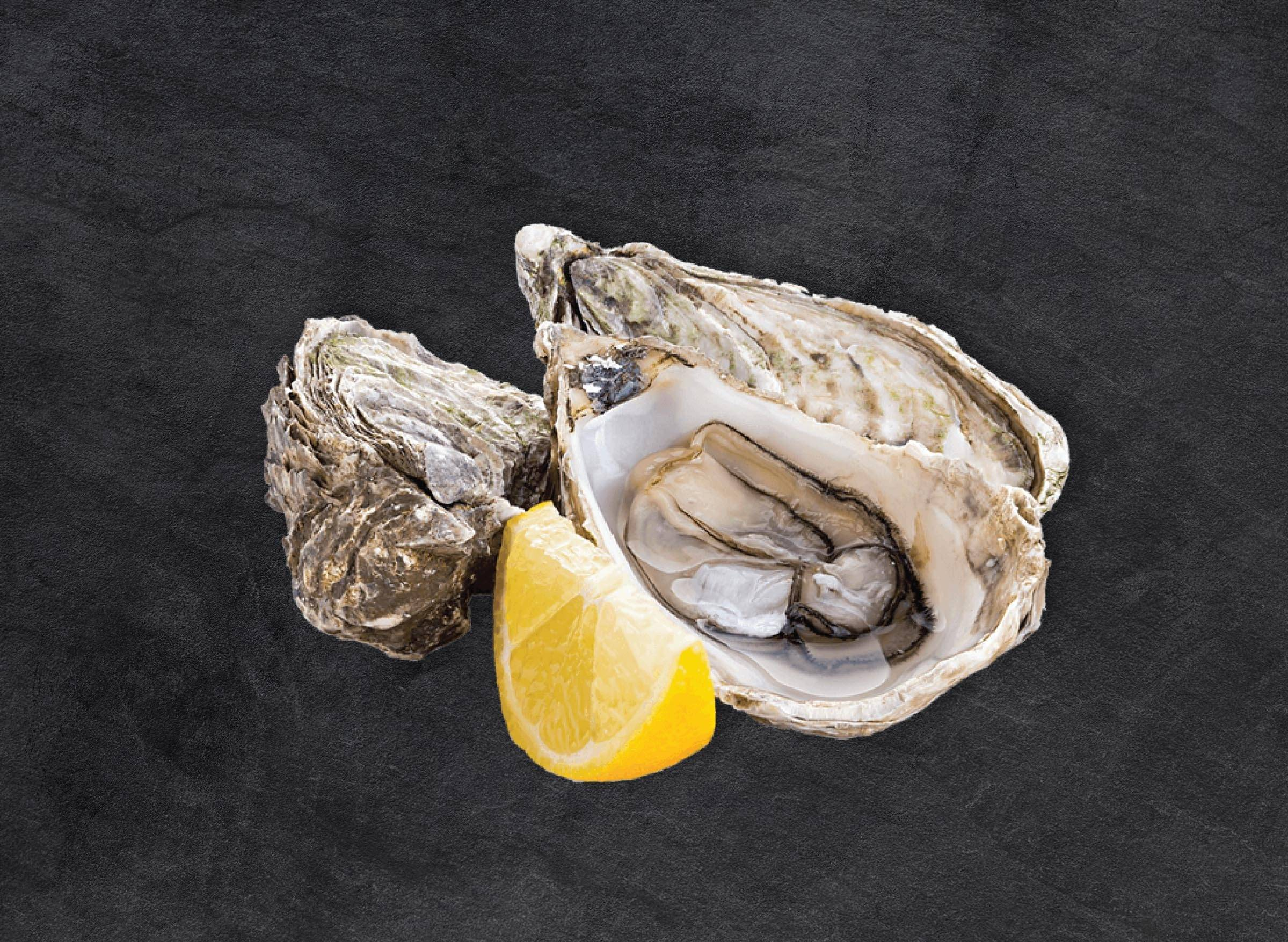 10 x Canadian Oysters