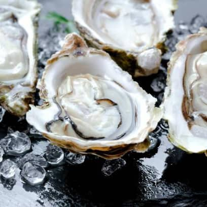 1 x 6pc Oyster Set + 1 x Drink