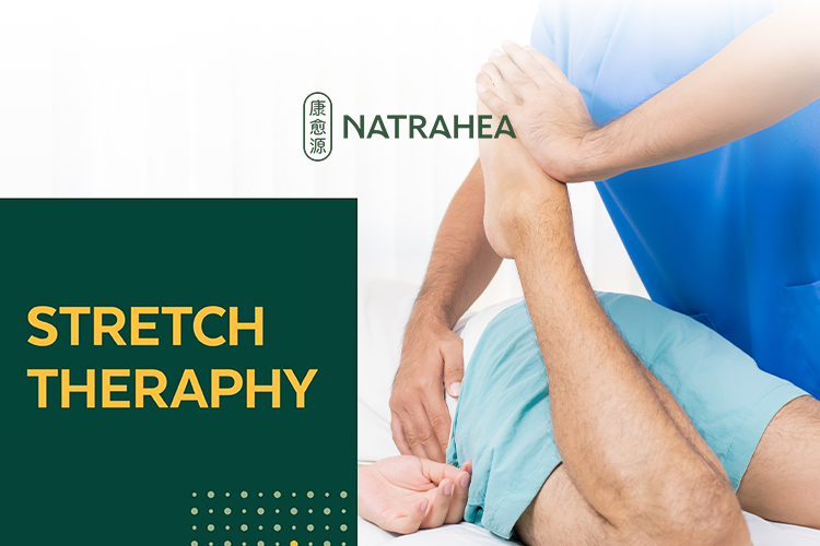 Stretch Therapy for 1 person (1 session)