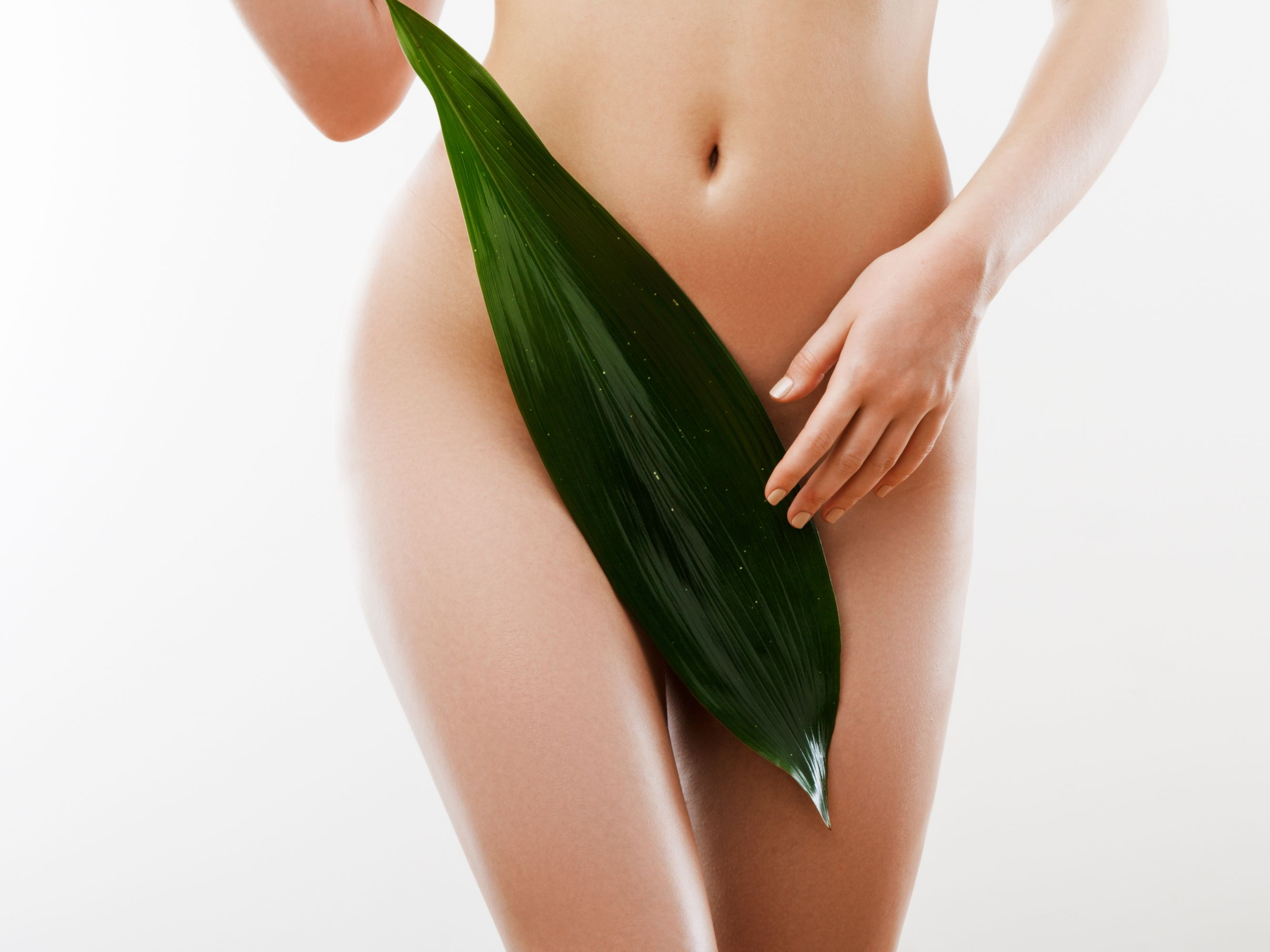 12 Sessions Brazilian EPL Hair Removal for 1 Person