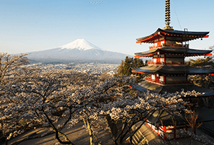 Get up to P1,500 off your Japan  Accommodation