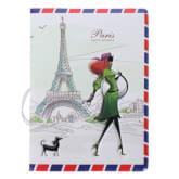 Oem New Passport Holder Card Cover Travel ID Credit Protector PR001 (Intl)