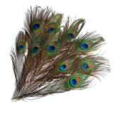 DIY 10 Peacock Eye Tail Feather For Masquerade Decoration Party New