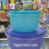 Tupperware Wonderbowl Set(2pcs).